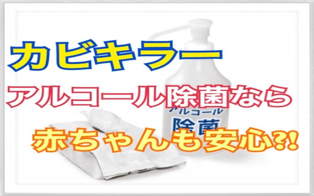 除 濃度 キッチン カビキラー 用 アルコール 菌